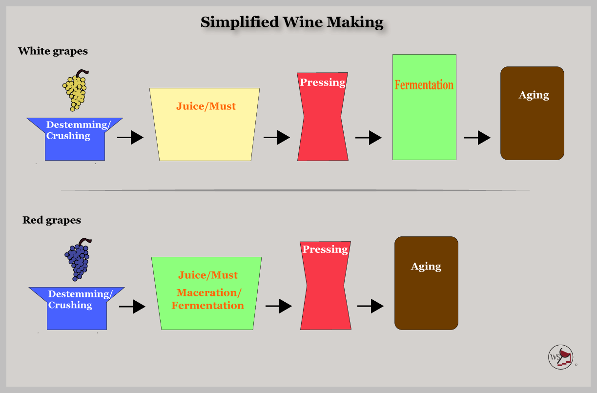 Infogr. of a simple wine making process.
