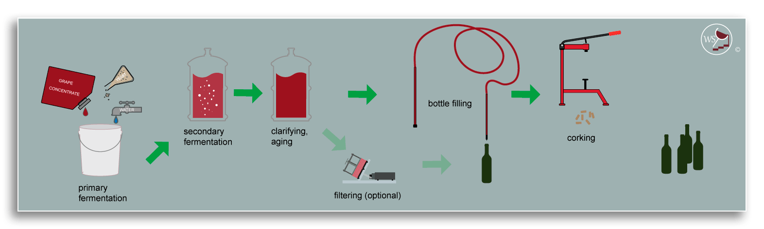 Infographic showing workflow for wine making from a kit