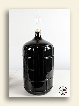 Image of homemade wine in a carboy.